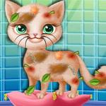 Little Elsa Save Stray Cat